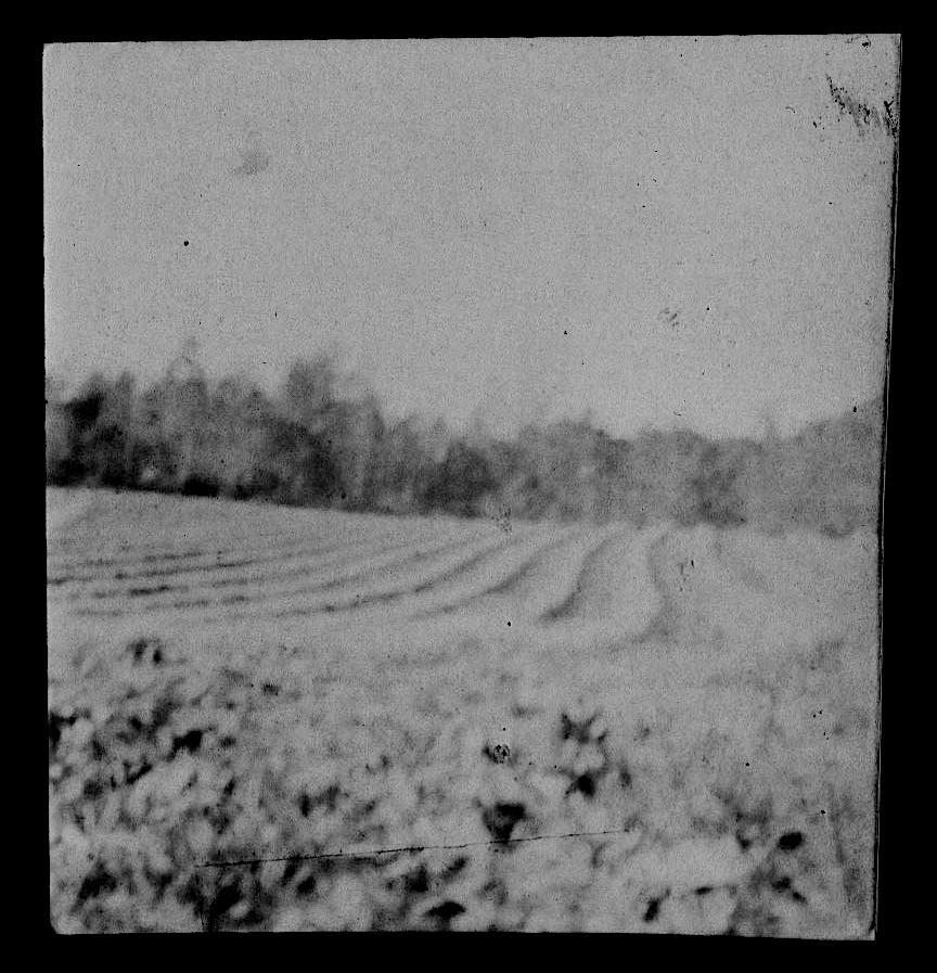 pose – bio photographie drome diois lavandes – lucyy 4