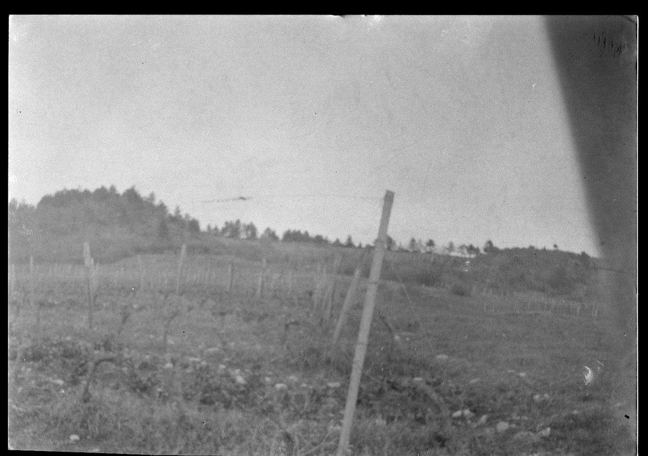 pose – bio photographie drome diois vignes cote cairn – lucyy 2
